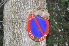 In der Lieferinger Au gibt es einen Schilder (fressenden) Wald