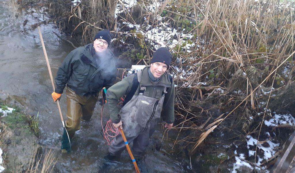 Fischbestand im Glanfeldbach vom Fischotter vernichtet
