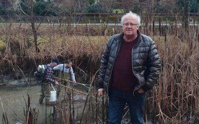 """Fische """"stören"""" Amphibien und Lurche"""