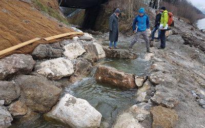 Vorbildlich gestalteter Fischaufstieg in den Gersbach