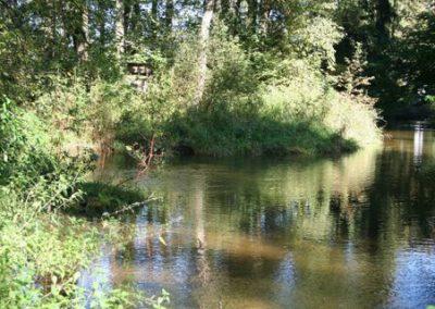 Untere Glan mit Glanüberwasser und Lieferinger Mühlbach (Revier 8)